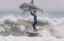 Polémico spot de KFC recrea el ataque del surfista Mick Fanning por un tiburón