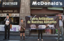 ONG's protestan por antibióticos en carnes de McDonald's, Subway y KFC