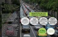 #Hoynocircula, Grupo Bimbo y Reforestamos México en campaña por un aire más limpio