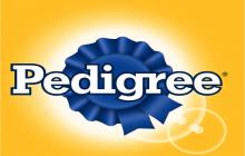 Spots de campaña de Pedigree: Alimenta lo bueno