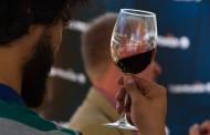Llega el vino con la Vendimia En Nuestra Tierra 2018